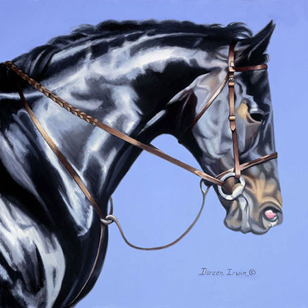 Equestrian Oil Painting 'Champion' by Doreen Irwin